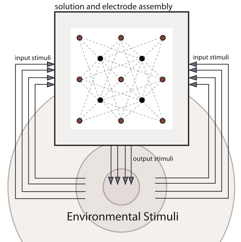 Figure 2 - The general characteristics of a Biopoiesis system. Information from the environment is fed into the stannous chloride solution, thus affecting growth of dendritic threads that, in turn, affect any outputs to the environment—a cybernetic feedback loop. In this system diagram, 13 electrodes (4 cathodes [black dots] and 9 anodes [red dots]) are placed in the stannous chloride solution, but different electrode numbers might be used depending on the goals of a particular implementation.
