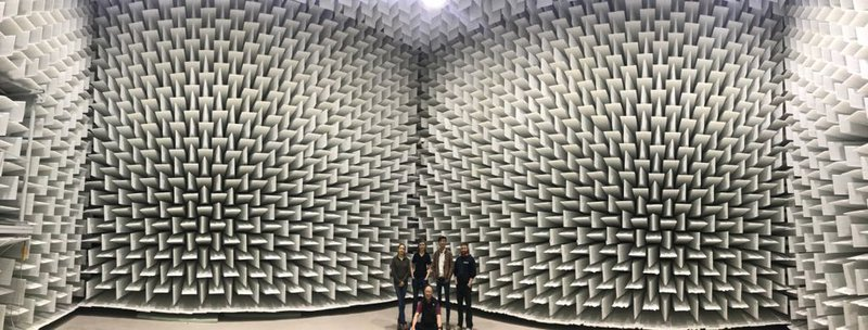 Inside the University of Ferarra's anechoic chamber. p.c. Ed Moriarty