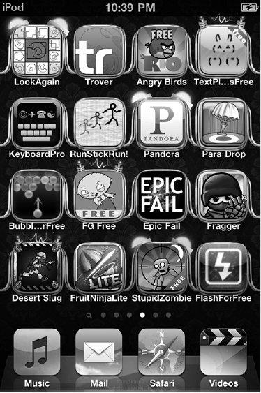 <p>Figure 3.3 Ras's customized iPod screen</p>