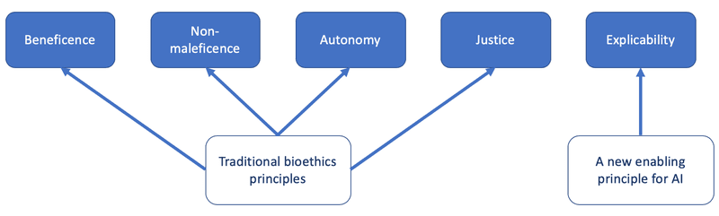 <p><br></p><p>Figure 2: An ethical framework of the five overarching principles for AI which emerged from the analysis.</p>