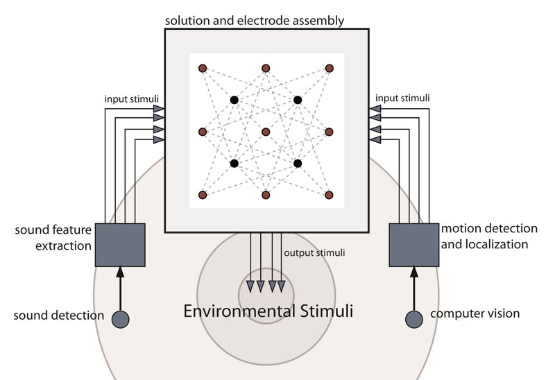 Figure 3 - The Organic Learning setup. Coincident sound and motion information was fed into the stannous chloride solution.