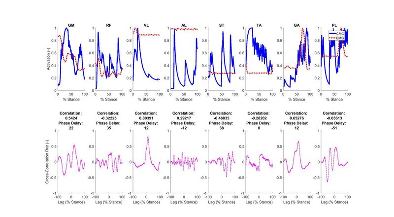 <p>Figure S1: The time-varying data for calculated muscle activations and experimentally measured EMG (top) were compared using cross-correlation (bottom) for normal walking.</p>