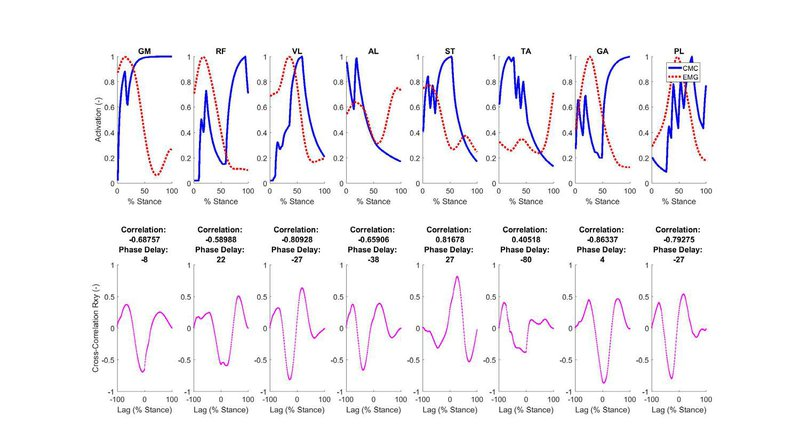 <p>Figure S3: The time-varying data for calculated muscle activations and experimentally measured EMG (top) were compared using cross-correlation (bottom) for running.</p>