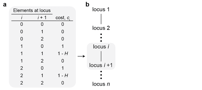 Supplementary Figure 2 | Mechanistic model for fitness parameters assumed in the daisy drive system. a, We assume that fitness costs primarily arise from cutting and misrepair events which result in disrupted haploinsufficient target genes. Such events occur only when there is a drive element at some locus (i) and a susceptible target at the next locus (i+1). If the next locus has two wild-type alleles—that is, no drive elements—then cutting and misrepair is lethal: the fitness cost associated with this pair of loci is thus ci = 1. If the next locus has one wild-type allele, then misrepair events occur precisely when homing does not succeed, and this happens with probability 1-H; thus the associated cost is ci = 1-H. If there is no drive element at the first position and/or no susceptible targets at the second position, then no cutting can occur and thus no cost is incurred. (b) We assume that the cost contributed by each link in the chain is independent. We calculate the costs ci for each pair of adjacent links, and the total fitness of the organism is then the product (1-c1)(1-c2)...(1-cn), where cn is the cost associated with the payload gene.