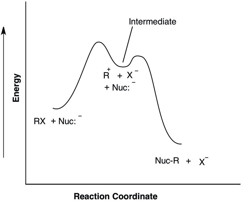 Figure 2. Tami I. Spector, Potential energy diagram for a reaction (SN1) that includes an intermediate. © Tami I. Spector, 2016. Courtesy of the artist.