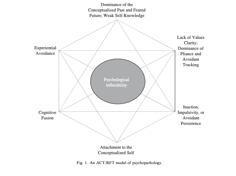 <p>ACT Model in Psychopathology. In Hayes, S.C. et al. Behaviour Research and Therapy 44 (2006).</p>