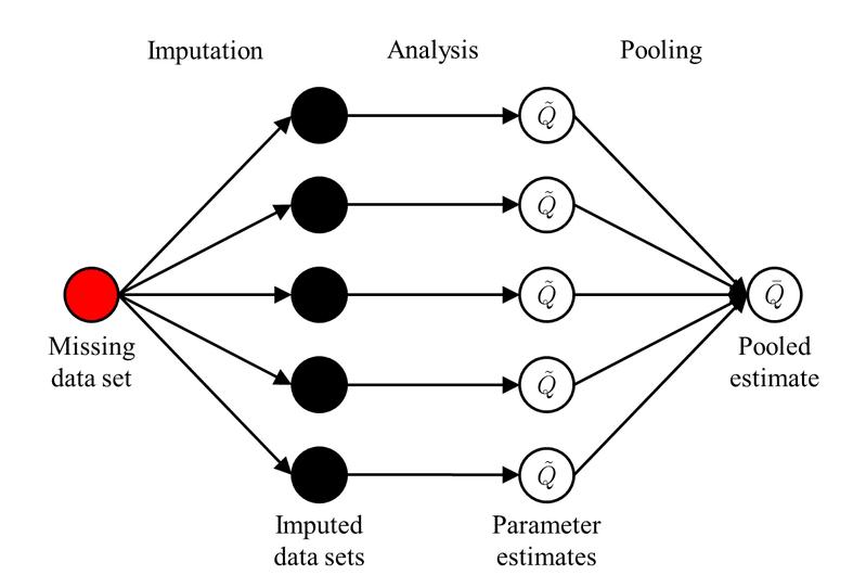 <p><br></p><p>Figure 3. Multiple imputation.</p>