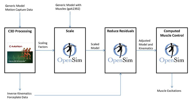 <p>Figure 1: Flowchart of the Visual3D to OpenSim pipeline used to create muscle-actuated forward dynamic simulations of movement. These simulations calculate the muscle excitations needed to achieve an experimentally measured motion.</p>