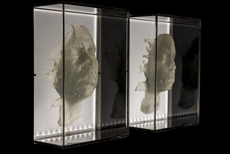 """<p>Gina Czarnecki is a multimedia artist who regularly works with human biological materials like fat cells and donated baby teeth. In this work called """"Heirloom"""", she grew living portraits of her daughters through cultivating and nurturing a single sample of their cells taken in 2014. Installation view of """"Heirloom"""" (2016), Gina Czarnecki and John Hunt.</p>"""