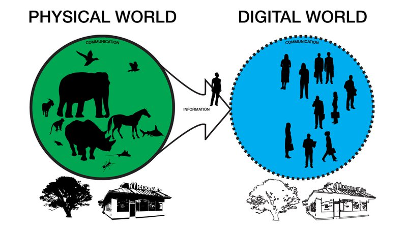 Figure 1 - The standard model of many digital applications. Illustration by Andrew Quitmeyer. Public Domain Andrew Quitmeyer, 2011. Used with permission.
