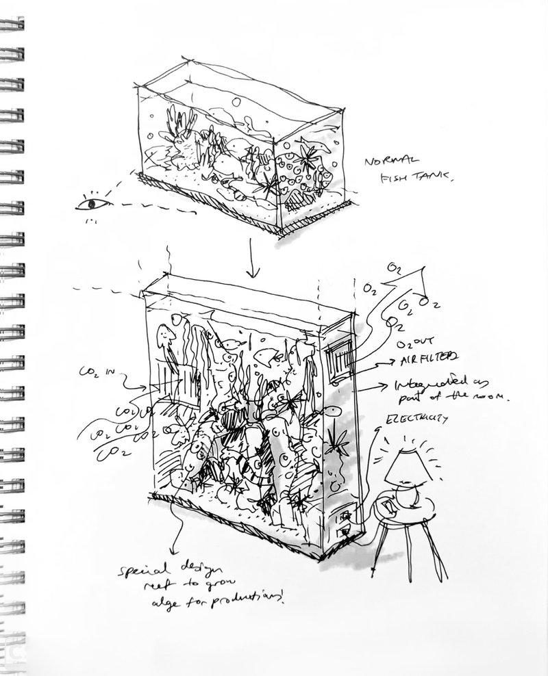<p>Concept Sketch</p>