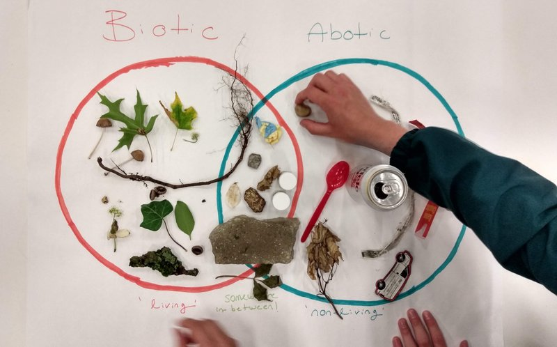 <p>Biotic-Abiotic Venn diagram</p>