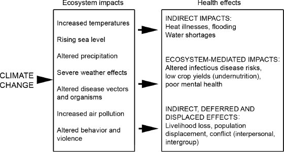 <p>Figure 1.1 Critical relationships between climate change ecosystem effects and human health. Adapted from figure SDM 1 in C. Corvalán, S. Hales, A. J. McMichael, Millennium Ecosystem Assessment (Program), and World Health Organization, <em>Ecosystems and Human Well-Being, Health Synthesis: A Report of the Millennium Ecosystem Assessment</em> (Geneva: World Health Organization, 2005).</p>