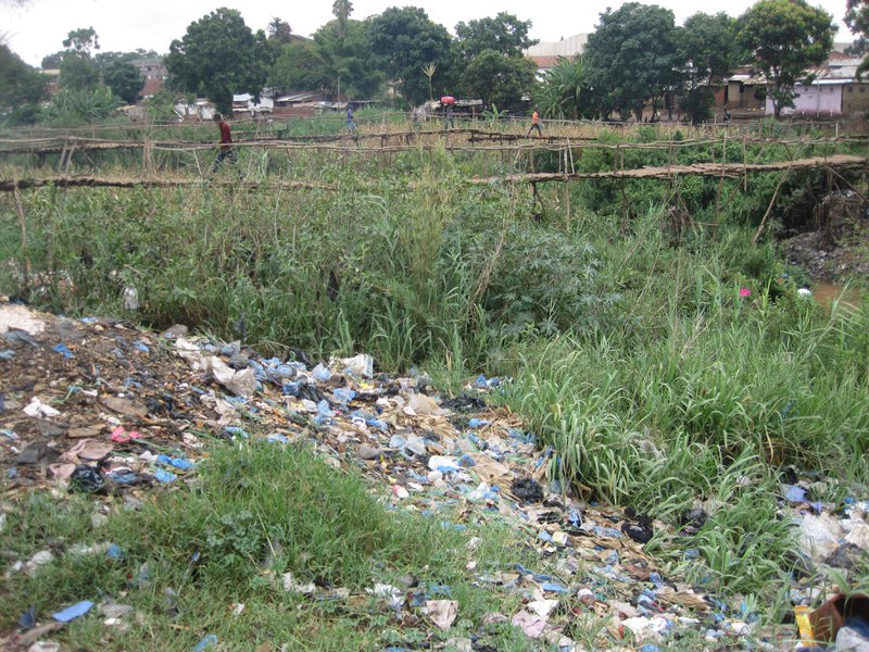 "<p class=""""><br></p><p class=""""><em>Figure 1. Garbage on the banks of Lilongwe River, Malawi 