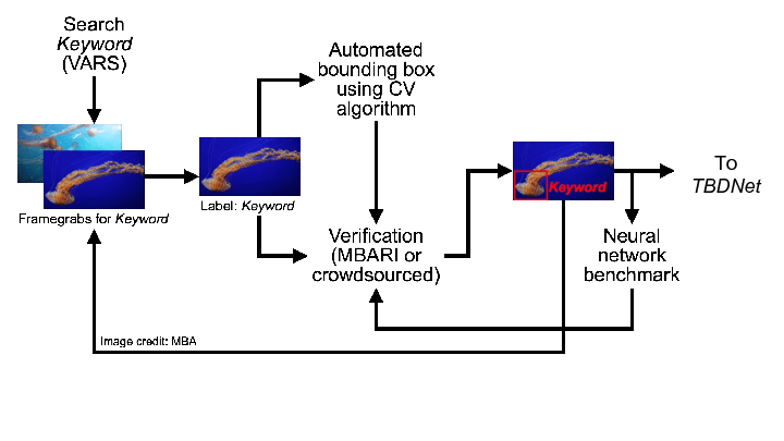 Figure 2. Schematic describing the proposed localization algorithm development using MBARI's curated deep sea video database and VARS.