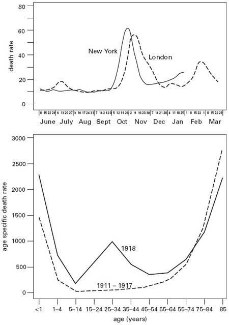 <p><strong>Fig. 2.17</strong><br><em>Upper</em>, total mortality in New York and London, 1918-1919. Based on image 3143, National Museum of Health and Medicine, Washington, D. C. <em>Lower</em>, influenza and pneumonia mortality in the United States, 1911-1917 and 1918. Plotted from data in Linder and Grove (1943).</p>