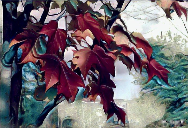 """<p><em>""""Autumn,""""digitally enhanced photo, June 8, 2020, Carolyn Martin</em></p><p></p>"""