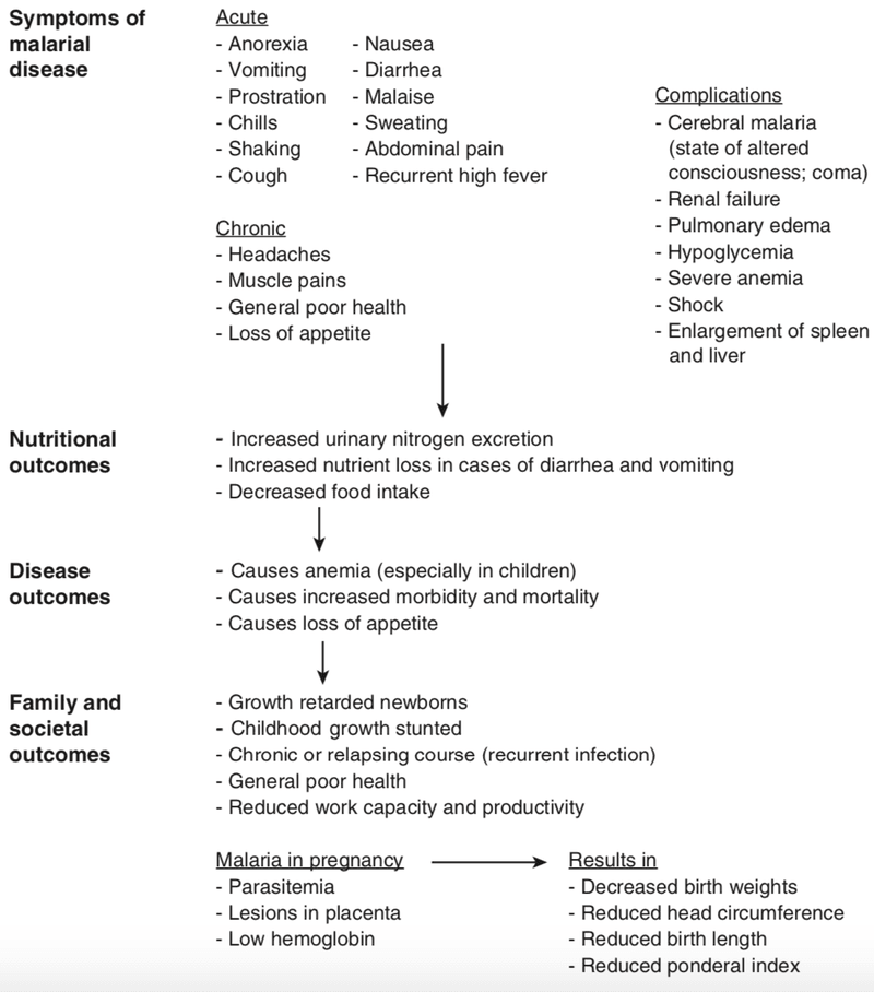 <p>Figure 6.4</p><p>Effects and consequences of malarial disease in human populations. Sources: Bruce-Chwatt (1980); Meuris, Piko, Eerens, et al. (1993); Oaks, Mitchell, Pearson, and Carpenter (1991); Steketee, Wirima, Hightower, et al. (1996); Strickland and Hunter (1982)</p><p></p>