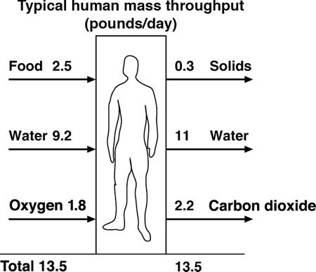 """<p><br></p><p>Figure 1.1 ¶ John Walker, """"Human Mass Throughput,"""" in <em>The Hacker's Diet</em>, 2005, <a href=""""http://www.fourmilab.ch/hackdiet/e4/rubberbag.html"""">http://www.fourmilab.ch/hackdiet/e4/rubberbag.html</a>.</p>"""