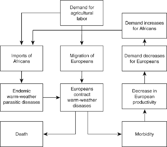 <p>Figure 5.2</p><p>Effects of migration on the disease ecology in the warmer regions of British America</p>